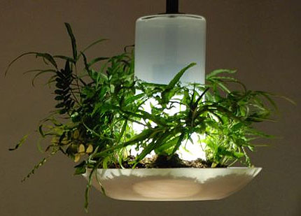 Greenlight, de gezonde LED-lamp ?