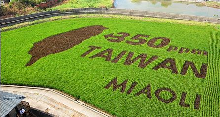 Taiwan Earth Art