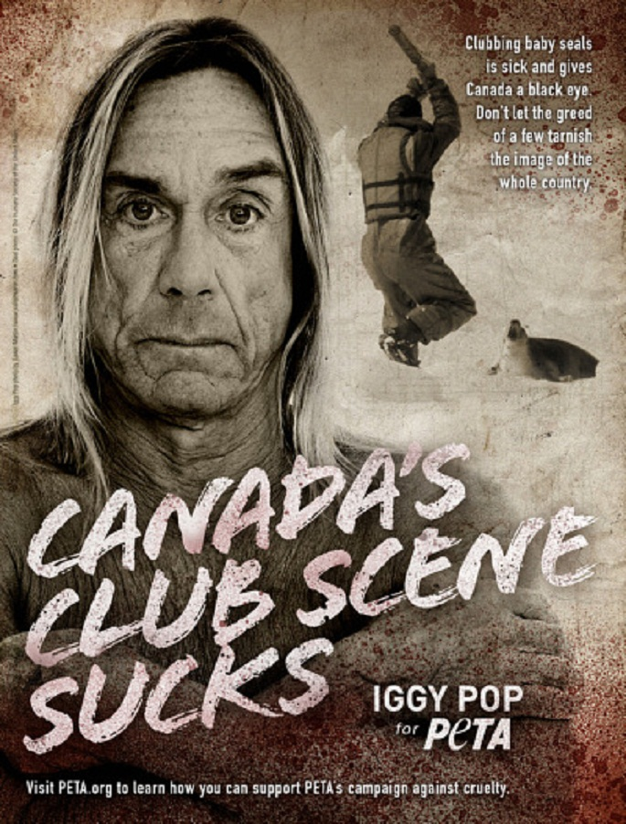 Iggy Pop Fights Canada's Seal Slaughter